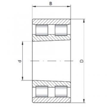 ISO NN3014 K cylindrical roller bearings
