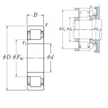 NSK NJ1020 cylindrical roller bearings