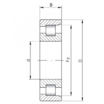ISO NF210 cylindrical roller bearings