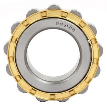 Toyana NN3980 cylindrical roller bearings