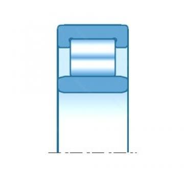 NTN R1743 cylindrical roller bearings