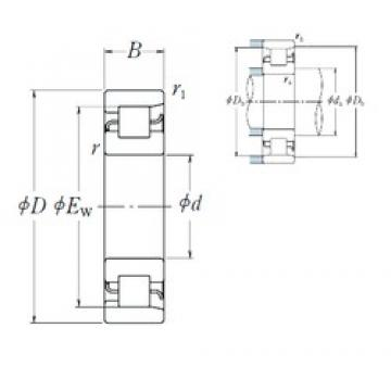 NSK NF1064 cylindrical roller bearings