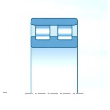 NTN NN3016C1NAP4 cylindrical roller bearings