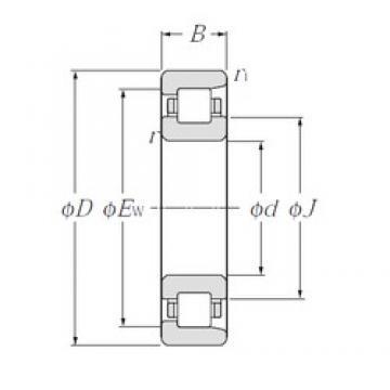 NTN NF256 cylindrical roller bearings