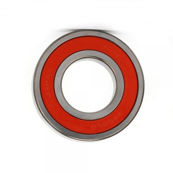 High Speed Electr Motor Bearing 6203 Rzhybrid Ceram Bearing 6204 6206 TM6204 22 6207zz 62200 6205hc 6211 6201 6232 626 6300 6301 6303 6305 6302 #1 image