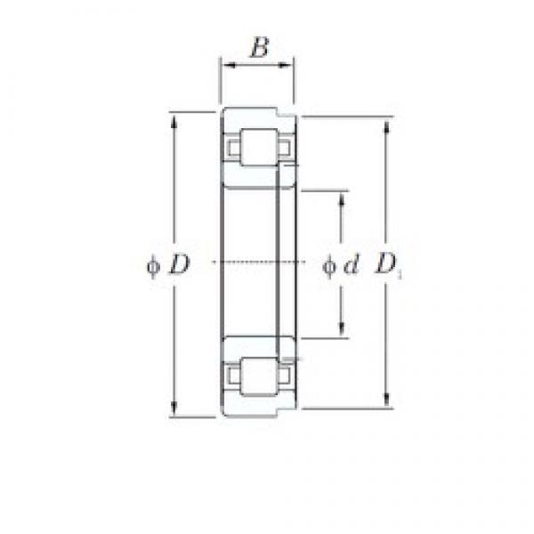 KOYO NUP1012 cylindrical roller bearings #1 image